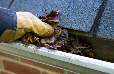Gutter Cleaning Services in NY and CT