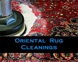 Oriental Rug Cleanings