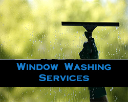Window Washing Services